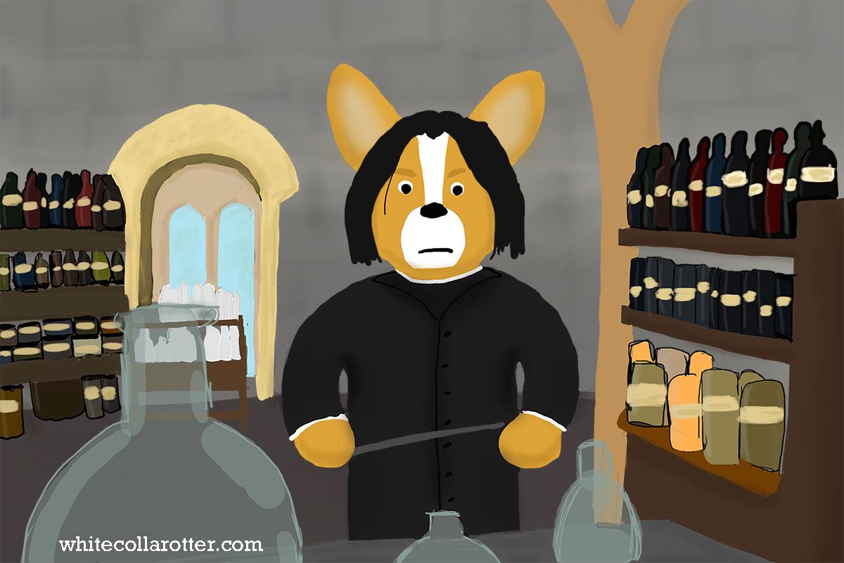 Corgi Snape