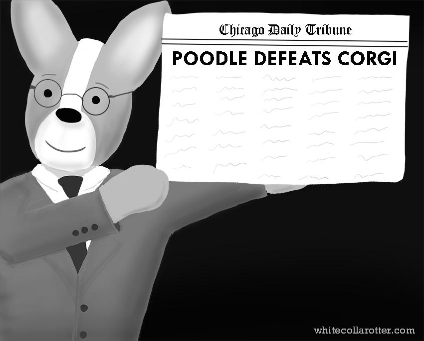 Poodle Defeats Corgi