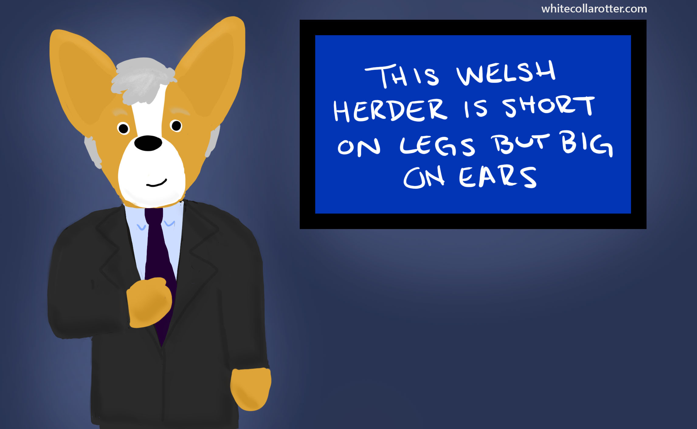 Jeopardy Corgi