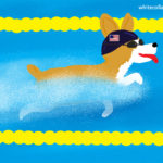 Corgi Olympic Swimmer